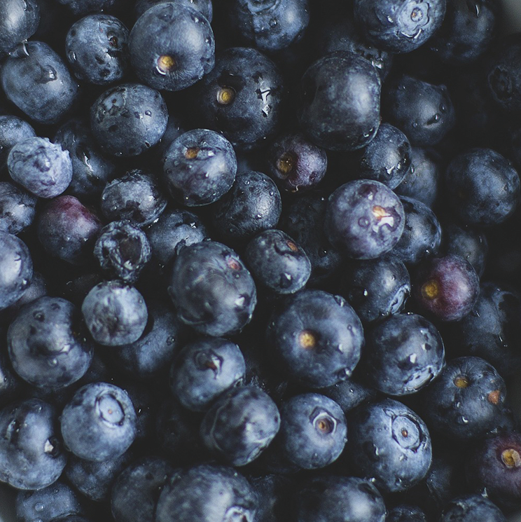 Lots of blueberries